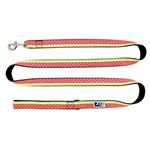 View Image 1 of Watermelon Dog Leash by RC Pet
