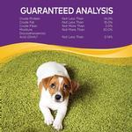 View Image 6 of Wellness Natural Grain-Free Soft Puppy Bites Treats - Lamb & Salmon