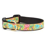 View Image 1 of Elephants Dog Collar by Up Country