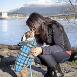 View Image 5 of Whistler Winter Dog Coat - Blue Tartan