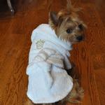 View Image 2 of White Gold Crown Cotton Dog Bathrobe by Doggie Design
