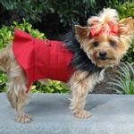 View Image 2 of Wool Fur-Trimmed Dog Harness Coat by Doggie Design - Red