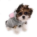 View Image 3 of Worthy Dog Elephant Hop Dog Hoodie