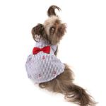View Image 2 of Worthy Dog Navy Stripe Anchor Dog Dress