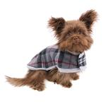 View Image 2 of Zack and Zoey Nor'easter Dog Blanket Coat - Gray