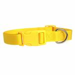 View Image 2 of Nylon Dog Collar by Zack & Zoey - Yellow