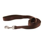 View Image 1 of Zack and Zoey Nylon Dog Leash - Chocolate