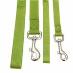 View Image 3 of Zack and Zoey Nylon Dog Leash - Parrot Green