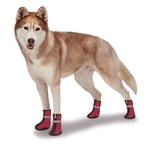 View Image 3 of Zack and Zoey ThermaPet Neoprene Dog Boots - Red