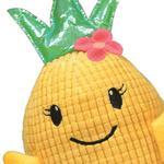 View Image 2 of Zanies Hawaiian Breeze Pineapple Girl Dog Toy