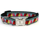View Image 2 of Santa Fe Dog Collar and Leash Set by Diva Dog