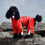View Image 6 of Zippy Dynamics Classy Full-Body Dog Suit