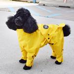 View Image 6 of Zippy Dynamics Rainy Full-Body Dog Rainsuit