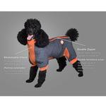View Image 2 of Zippy Dynamics Springy Dog Coat