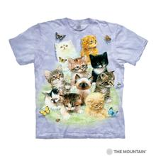 10 Kittens Human T-Shirt by The Mountain