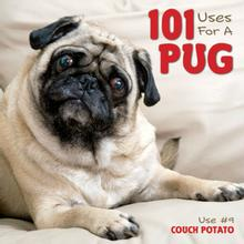101 Uses for a Pug Book for Humans