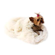 3-in-1 Cozy Dog Cuddle Sack - Ivory Powder Puff
