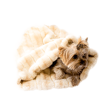 3-in-1 Cozy Dog Cuddle Sack - Caramel Mink