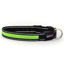 GLOPUP LED Dog Collar - Green