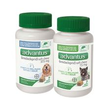 advantus Flea Treatment Soft Dog Chew