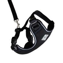 Adventure Kitty Cat Harness with Leash by RC Pet - Black