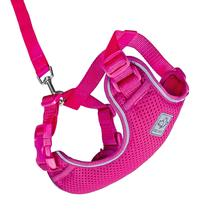 Adventure Kitty Cat Harness with Leash by RC Pet - Raspberry
