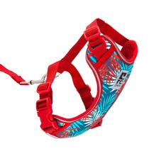 Adventure Kitty Cat Harness with Leash by RC Pets - Maldives