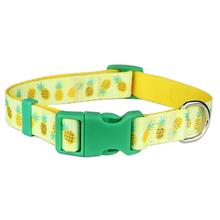 Parisian Pet Pineapples Dog Collar