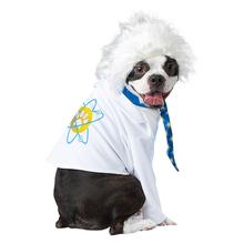 Al-Bark Einstein Dog Costume