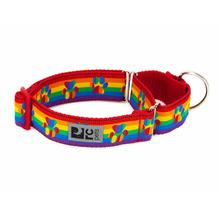 All Webbing Martingale Dog Training Collar - Rainbow Paws