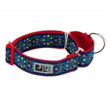 All Webbing Martingale Dog Training Collar - Feeling Folksy