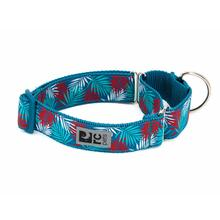 All Webbing Martingale Dog Training Collar - Maldives
