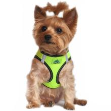 American River Top Stitch Dog Harness by Doggie Design - Iridescent Green