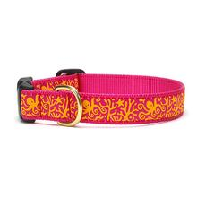 Under the Sea Dog Collar by Up Country