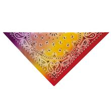 Aria Classic Paisley Dog Bandana - Purple/Red