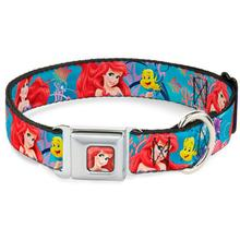 Ariel and Flounder Seatbelt Buckle Dog Collar by Buckle-Down