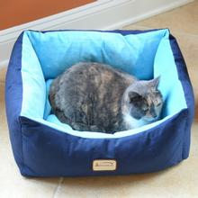 Armarkat Pet Bed - Navy Blue/Sky Blue