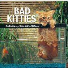 Bad Kitties Book for Humans: Celebrating Good times and Bad Behavior