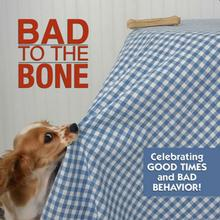 Bad to the Bone Book for Humans; Celebrating Good times and Bad Behavior
