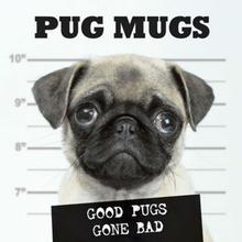 Pug Mugs Book for Humans; Good Pugs Gone Bad