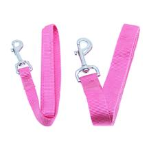 Barking Basics Dog Leash - Pink