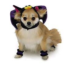 Bat Hat Pet Halloween Costume Hat