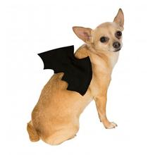 Bat Wings Dog Costume - Black