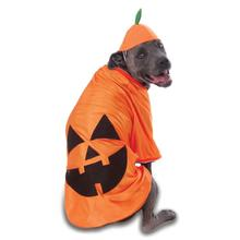 Big Dog Pumpkin Dog Costume by Rubies