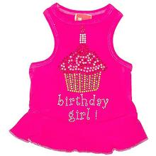 Birthday Girl Cupcake Rhinestone Dog Dress - Raspberry Pink