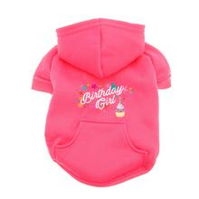Birthday Girl Dog Hoodie - Pink
