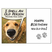 Birthday Greeting Card by Dog Speak - I Think I Smell An Old Person