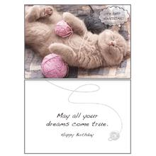 Birthday Greeting Card by Dog Speak - Yarn Balls...Awesome!
