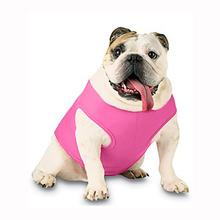 Blank Ribbed Dog Tank - Raspberry