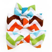 Color Chevron Dog Bow Tie from Daisy and Lucy